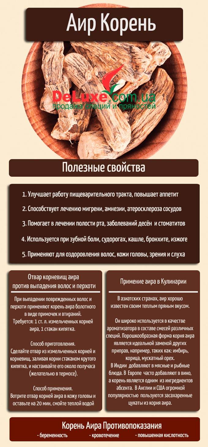 Корень аира. Описание, полезные свойства, химический состав и рецепты применения